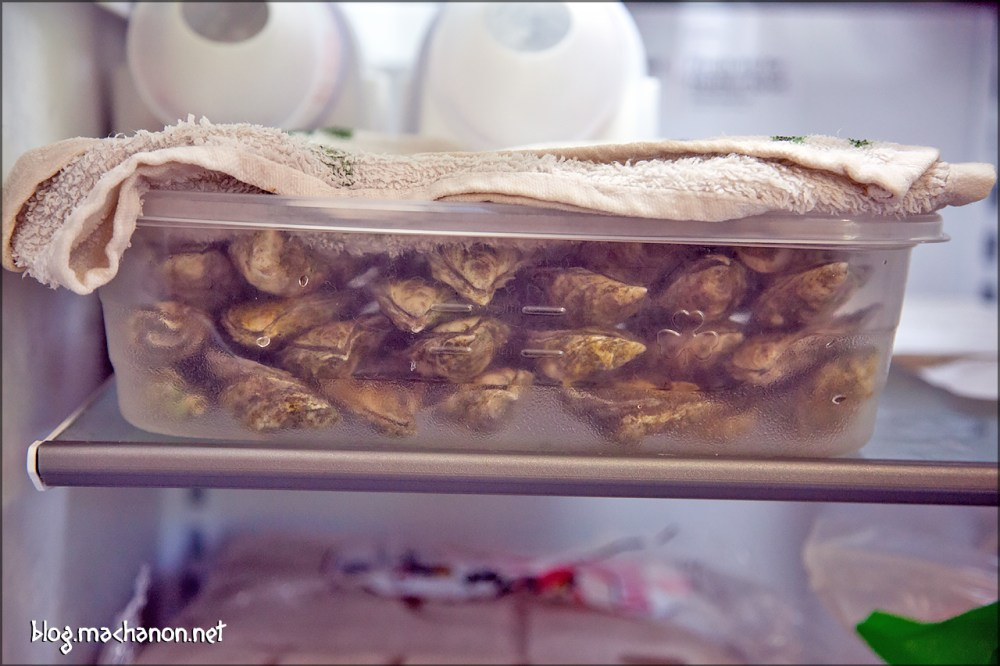49 Aunt Dotty oysters in one 76 oz. Tupperware container.