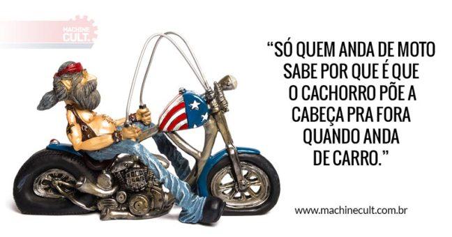 Frases de Moto: Só quem anda de moto sabe por que é que o cachorro põe a cabeça pra fora quando anda de carro...