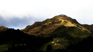 Mt Pulag - Ambangeg - 2