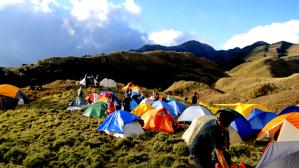 Mt Pulag - Campsite