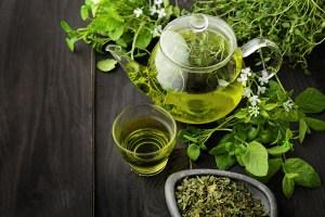 Plantes détoxifiantes pour des tisanes détox qui permettent d'éliminer les toxines