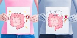 Microbiote la flore intestinal