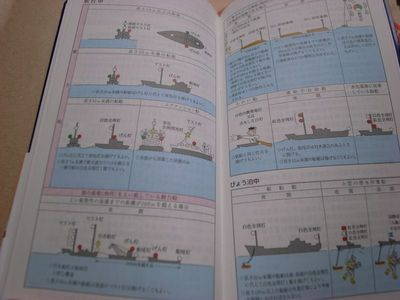 marine_diary2013-2.jpg