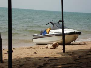 jomtien_beach01_s.jpg
