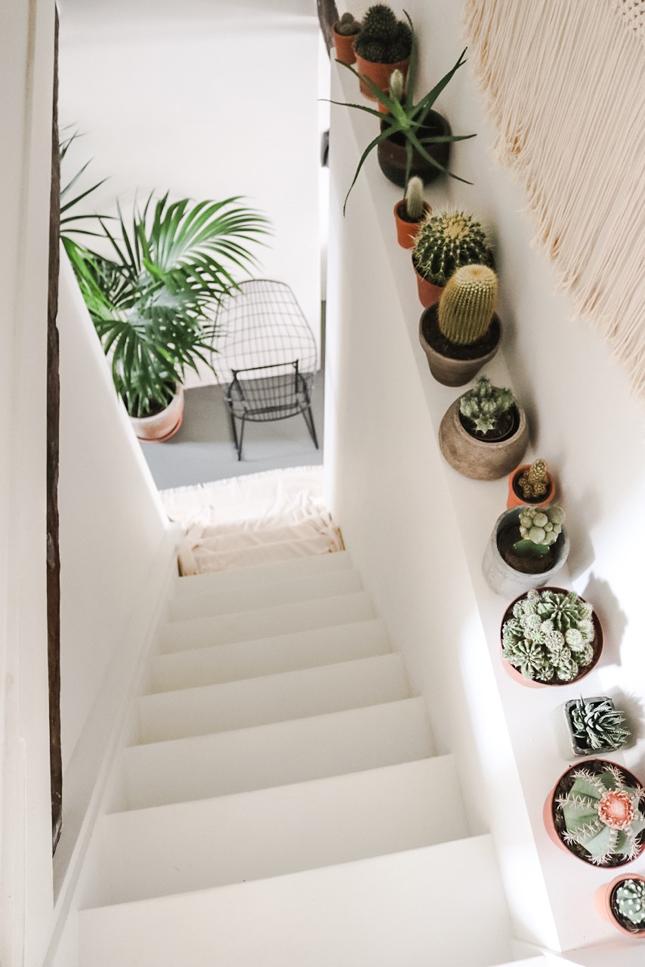 Idée déco pour décorer avec des plantes