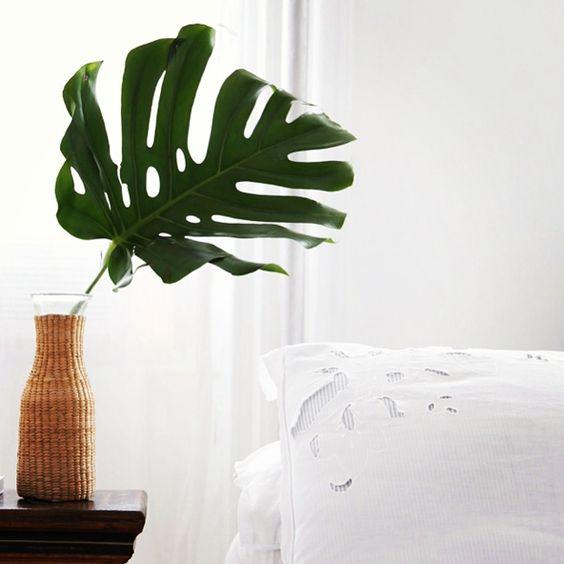 Une jolie idée déco pour mettre une plante dans sa chambre