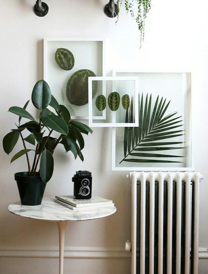 Une décoration originale pour mettre en valeur ses plantes