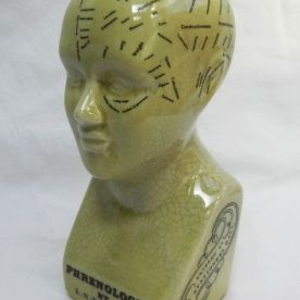 green phrenology head