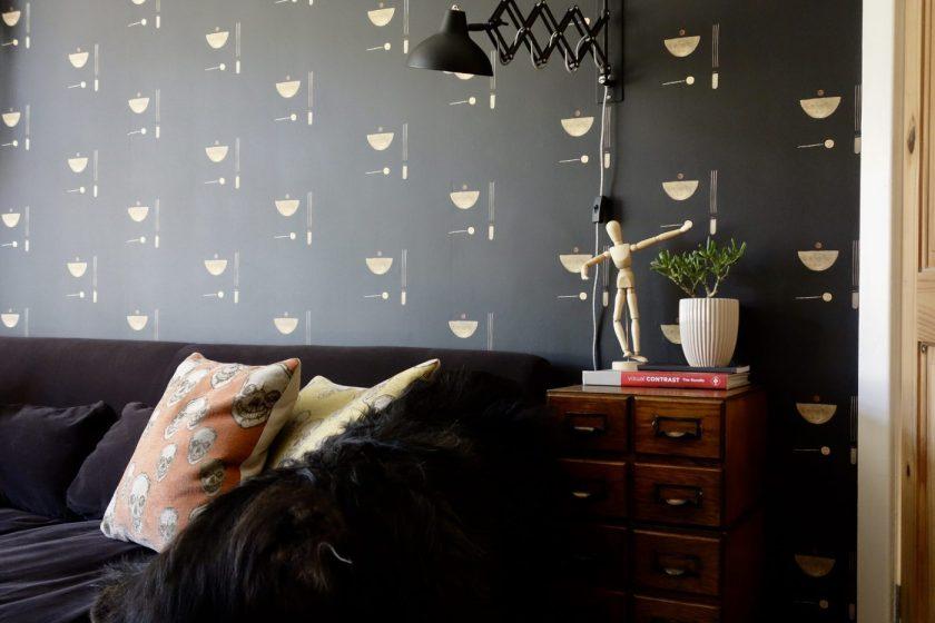 Black Parrots Studio Painted Wallpaper
