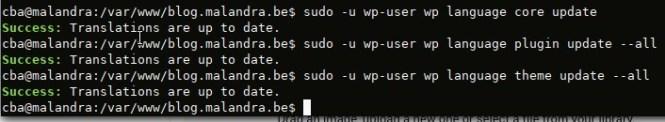 Mettre à jour les traductions avec wp-cli