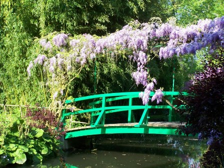 Wisteria on bridge. Image from http://giverny-impression.com/wisteria/