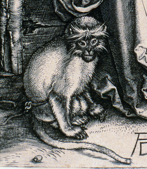 Detail of monkey
