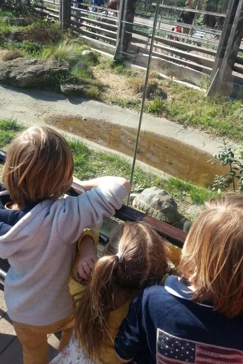 Découvrir Lyon avec les enfants - Parc de la Tête d'Or