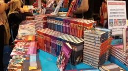salon-du-livre-paris-SDL2015-stand-editeur-evenement-manga-tv-sreaming-anime-online-legal-gratuit-stand-kana (1)