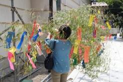 Wünsche auf Papier schreiben, und in Bambus aufhängen