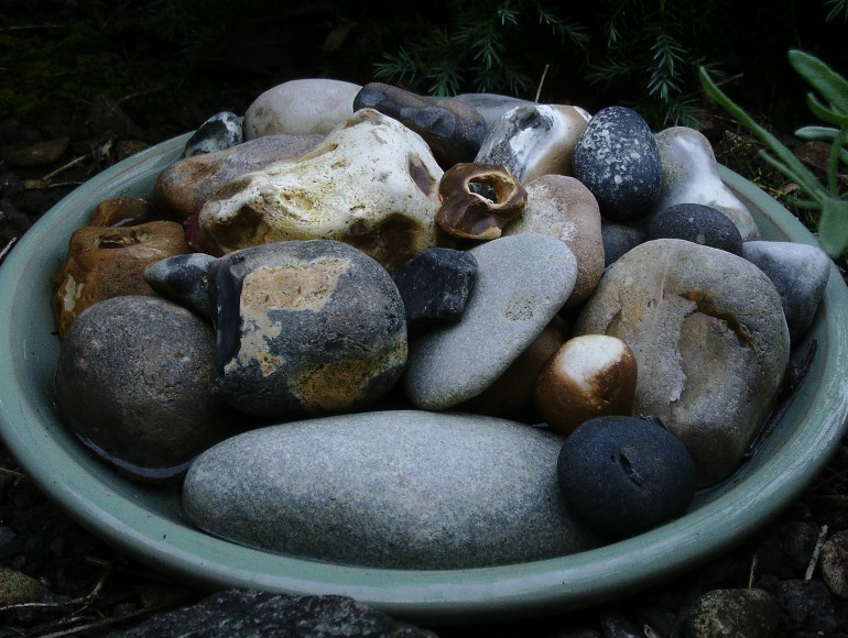 british wildlife garden the handy mano manomano green fingered blog tray of water with pebbles