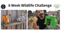 6 Week Wildlife Challenge
