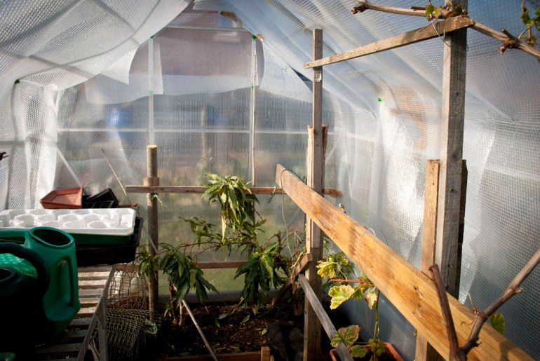 Top 5 Tips for Greenhouse Heating winter bubble wrap sustainable long lasting cheap maintenance easy simple fleece do it yourself diy gardening mano mano manomano the handy mano bubble wrap