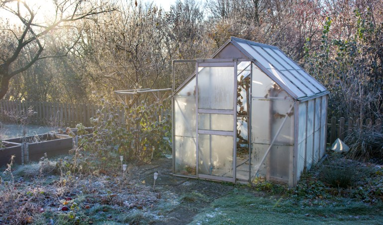 essential gardening jobs for november the handy mano manomano mano do it yourself diy home improvement gardening greenhouse frost winter cold