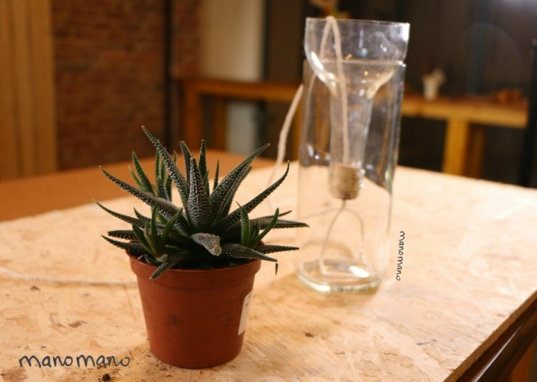 diy indoor planter plant planters self-watering wine bottle easy the handy mano manomano