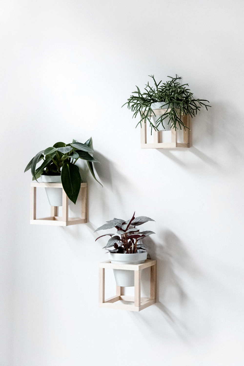 Mother's Day Gift Ideas Homemade Gifts presents mothering sunday the handy mano manomano off thewall hanging plants