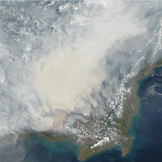 Borneo fire