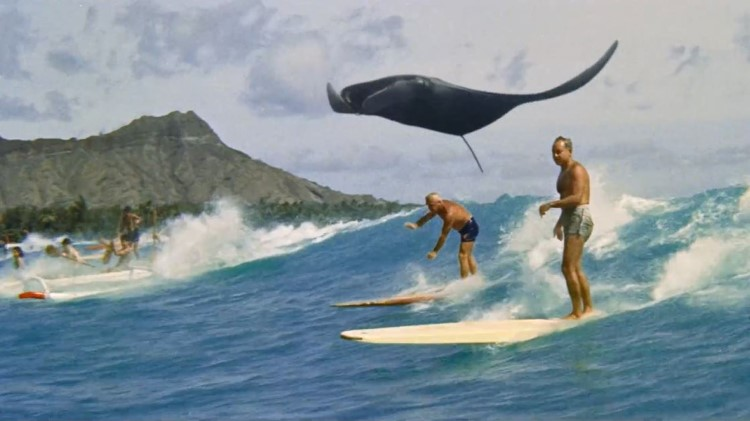 Up & Up Coldplay - Stingray Surfing