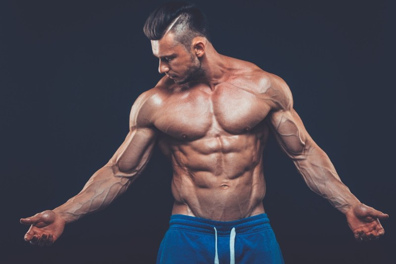 the difference between bodybuilding and powerlifting Bodybuilding