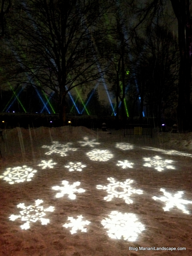 Chicago Lincoln Park Zoo Lights