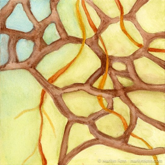 """Organics Sketch 17"" Watercolor crayons on Stonehenge paper 8"" x 8"" © 2010 Marilyn Fenn"