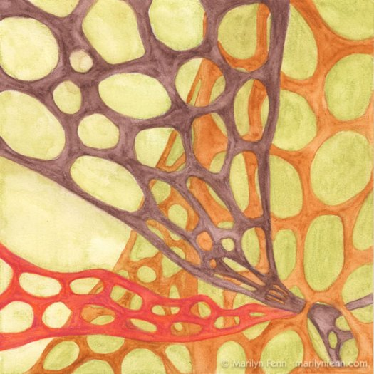"""Organics Sketch 19"" Watercolor Media on Stonehenge Paper 8"" x 8"" © 2010 Marilyn Fenn"