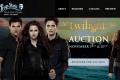 the twilight auction