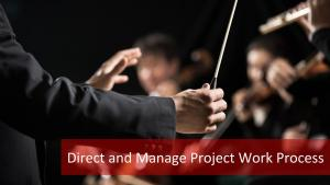Direct and Manage Project Work Process: How to Ace in Project Execution?