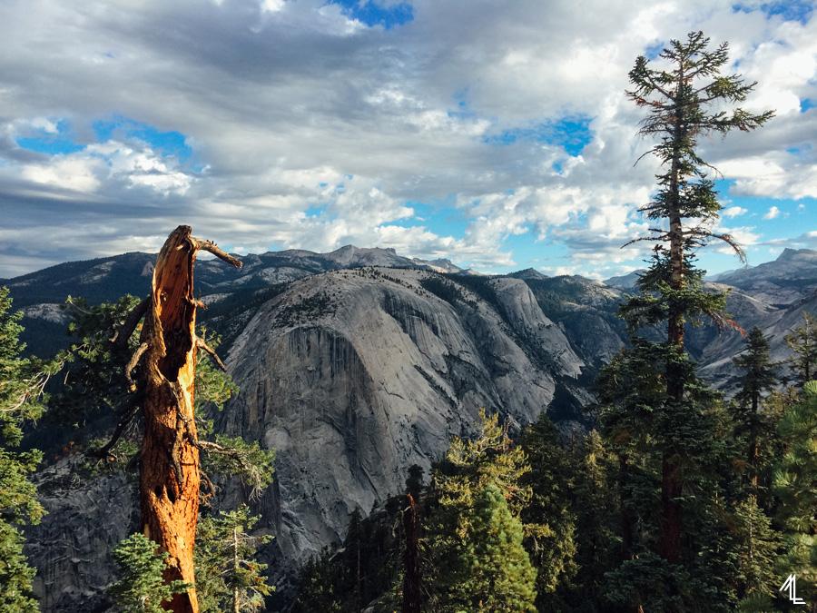 ML-Yosemite-009