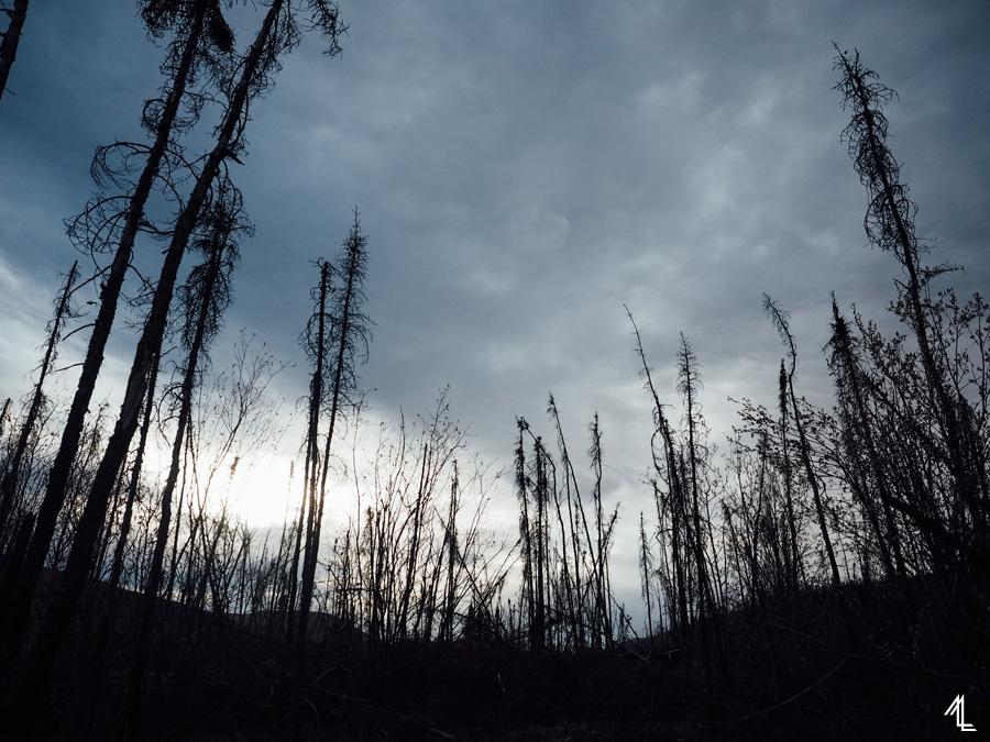 MellyLee-Alaska-015