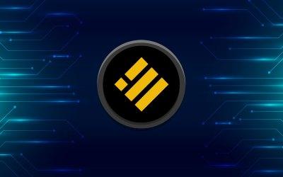Binance USD (BUSD) Profile