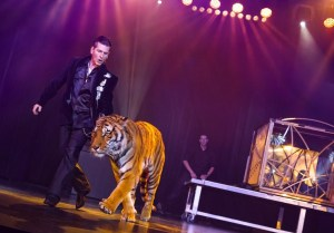 Greg Frewin leads a tiger around the stage.