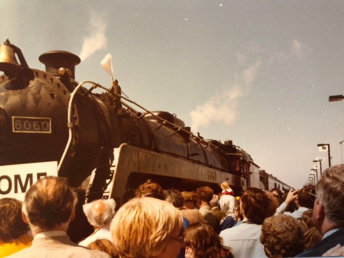 Crowds gather to see an historic train arrive at the station.