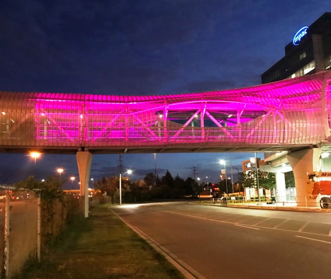 The bridge lights up pink in this photo.