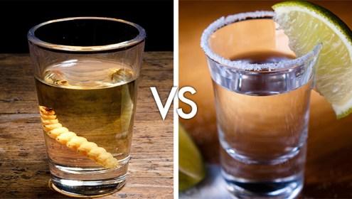 Mezcal VS Tequila