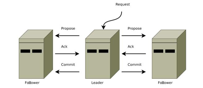 Figure 11: Procedure ZooKeeper