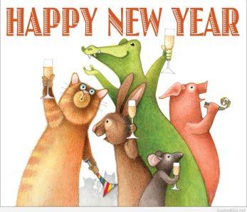 mi cabra vegana, tu tienda vegana de madrid y online te desea feliz año nuevo un año más