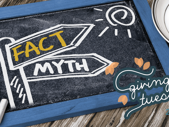 "Chalkboard with ""Fact"" and ""Myth"" drawn on it, with #GivingTuesday logo"