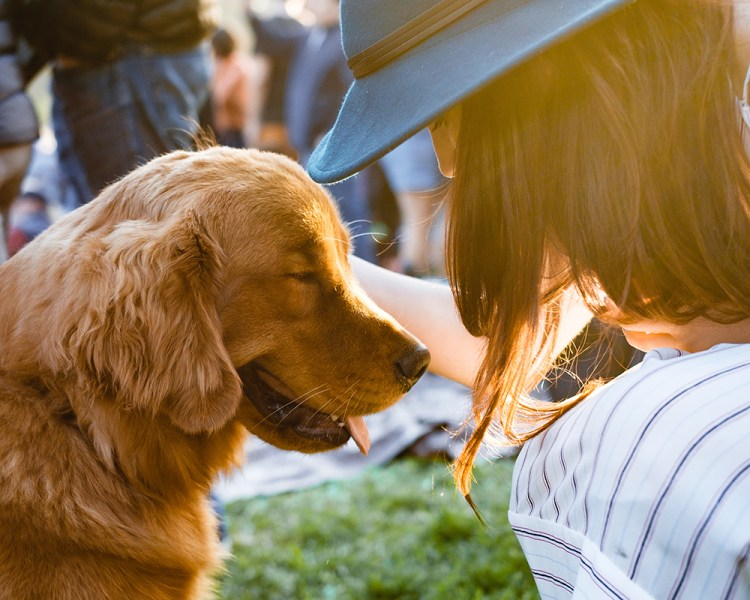 woman in hat petting golden retriever dog