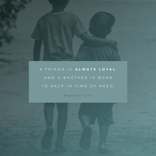 Proverbs 17:17 NLT