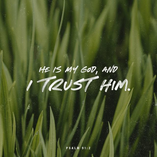 Psalms 91:2 NLT