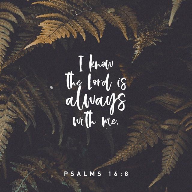 Psalms 16:8 NLT