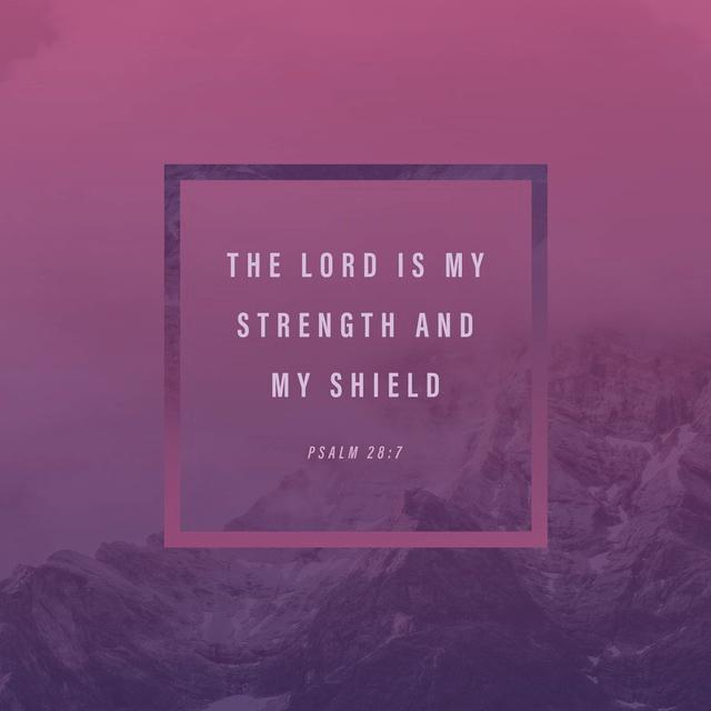 Psalm 28:7 NIV
