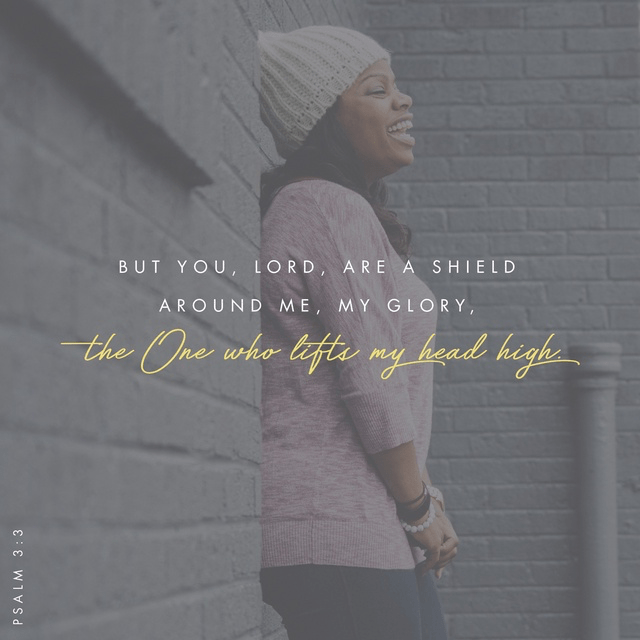 Psalm 3:3 NIV