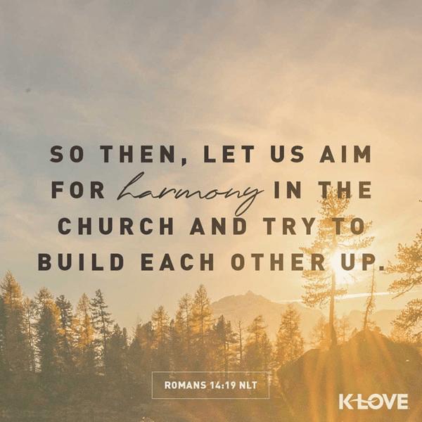 Romans 14:19 (NLT)